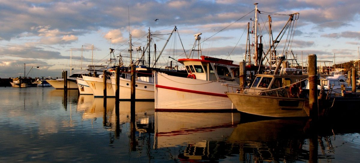Repérage amiante à bord des navires : les conditions d'accréditation précisées par arrêté